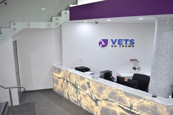 Vets On Crown | Veterinary Fit-Outs | ImpeccaBuild | Surry Hills (11)