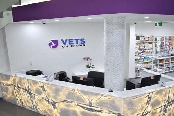 Vets On Crown | Veterinary Fit-Outs | ImpeccaBuild | Surry Hills (12)