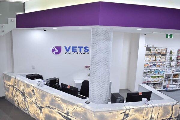 Vets On Crown | Veterinary Fit-Outs | ImpeccaBuild | Surry Hills (14)