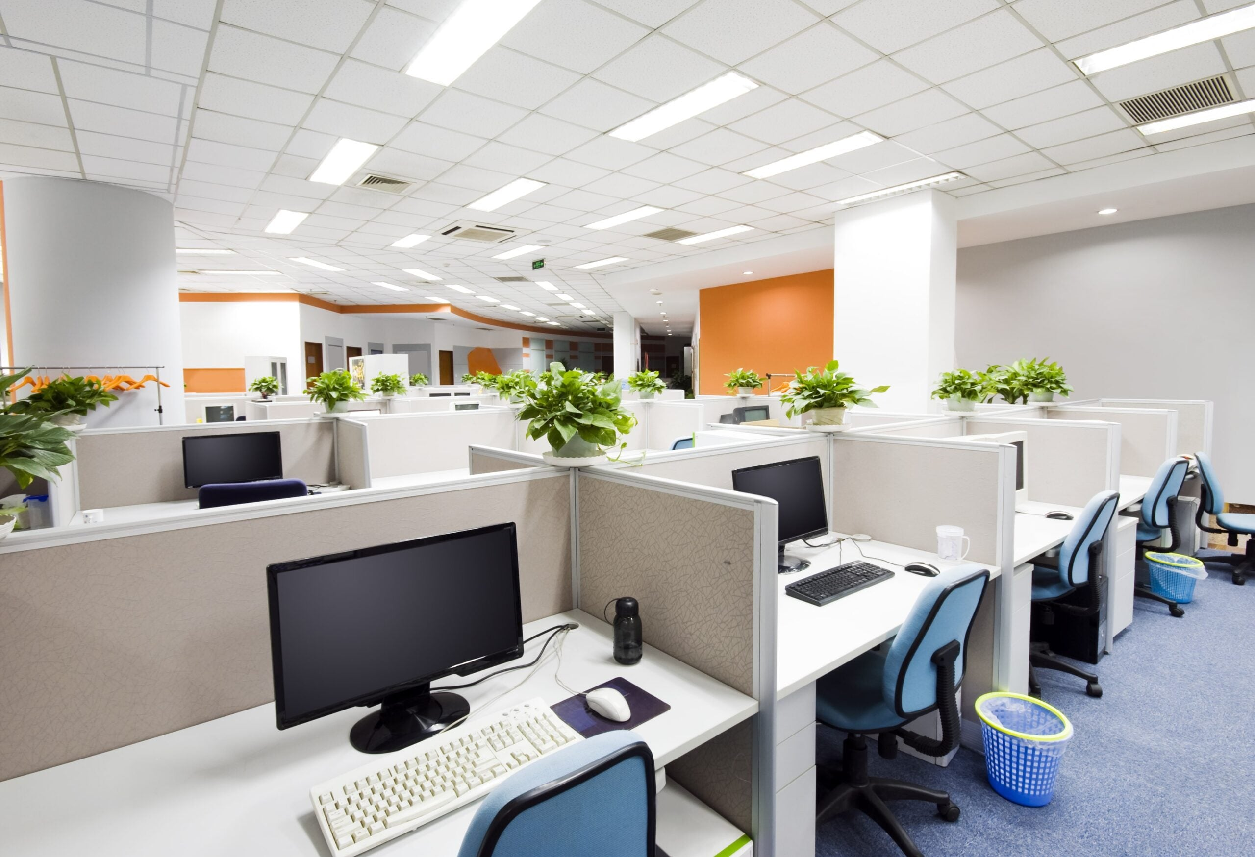 Office Layout Ideas | Cellular Office | ImpeccaBuild