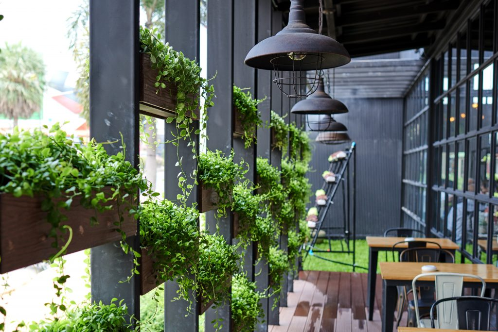 Cafe Theme Ideas | Indoor Garden Cafe Fitout | ImpeccaBuild 2
